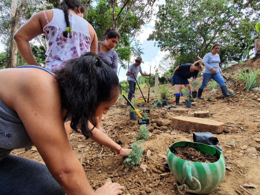 People digging the ground and planting in the soil.