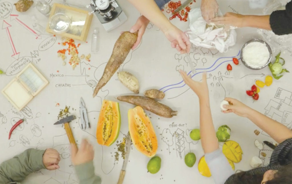 A view from above of people's hands working together to prepare food from cut fruit that is on the table.