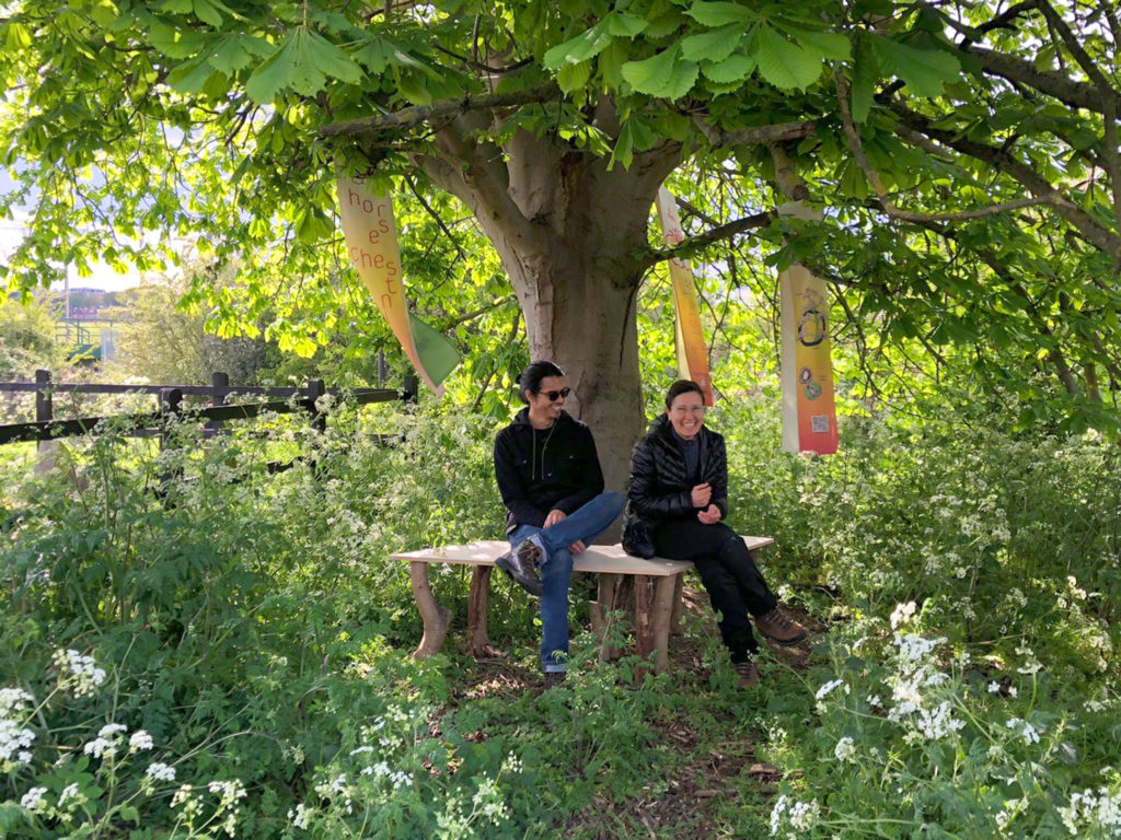 Two people sit laughing on benches underneath a large tree with three banners hanging around them with printed interpretive graphics.